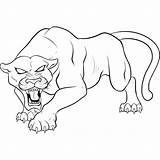 Panther Angry Coloring Pages Printable Categories Animals sketch template
