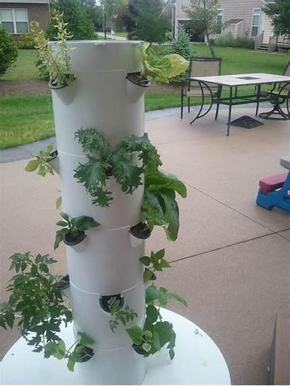 Tower Garden Gardening Hydroponic Grow Backyard Indoor
