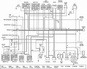 Scooter Wiring Diagram  58672