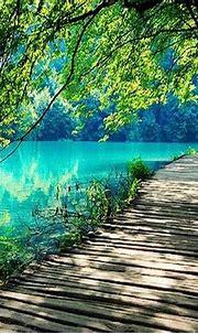 amazing nature wallpaper 10047797 | WallPics