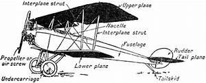 Biplane Drawing