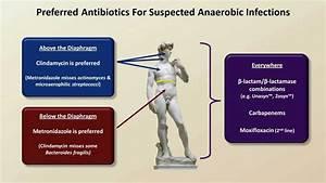 Antibiotics For Anaerobic Infections  Antibiotics