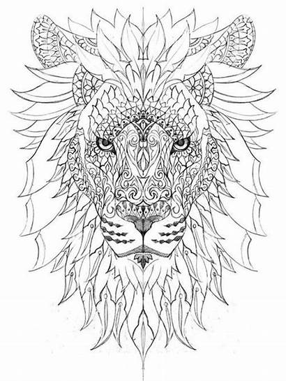 Stress Relief Coloring Pages Popular Printable Lion