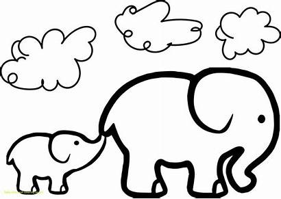 Elephant Cartoon Drawing Sketches Clipartmag