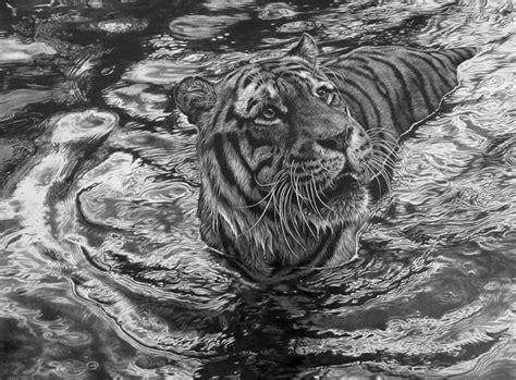 images  famous wildlife artists  pinterest