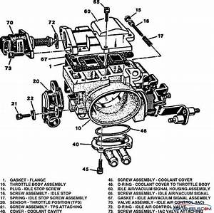 Throttle Body    Simple Explanation