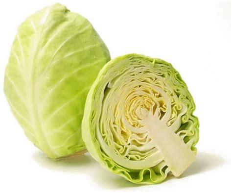 salade de chou blanc recettes