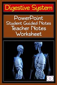 Digestive System  Powerpoint  Student Guided Notes  And 2