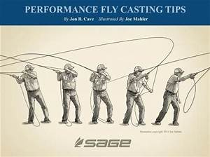 Performance Fly Casting  Length Of The Casting Stroke