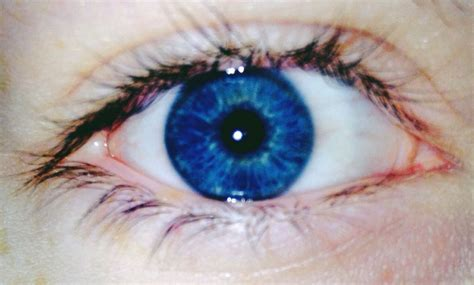 And Blue Eye by Really Eye Colors Especially Blue And