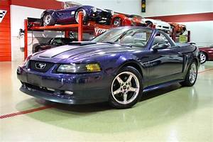 2003 Ford Mustang GT Supercharged Stock # M4689 for sale near Glen Ellyn, IL | IL Ford Dealer