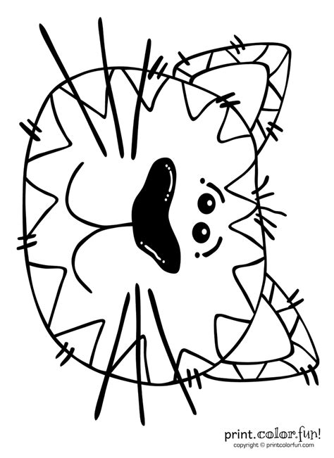 cartoon cat print color fun