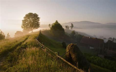 carpathian mountains trees countryside morning fog
