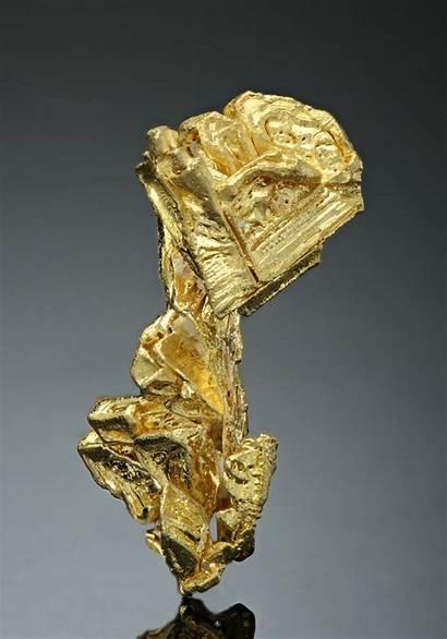 Gold Native Usa