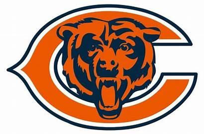 Bear Bears Chicago Printable Bing Shirts