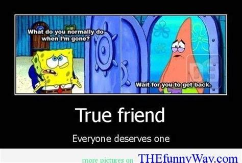 True Friend Meme - funny cartoon quotes about life funny cartoons funny way of life funniest jokes memes