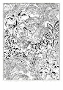 Jungle Scene Drawings Fine Art America
