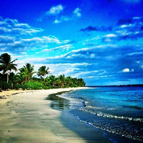 1000 images about culebra island on islands and flamenco