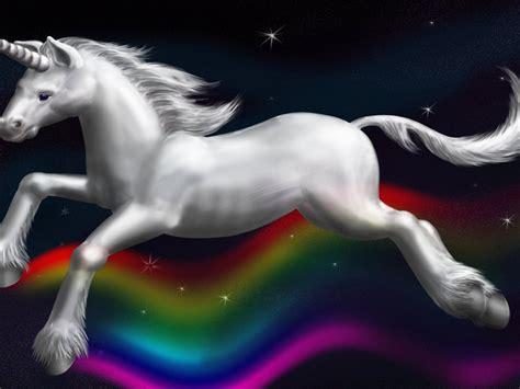 rainbow unicorn hd wallpaper wallpaperscom