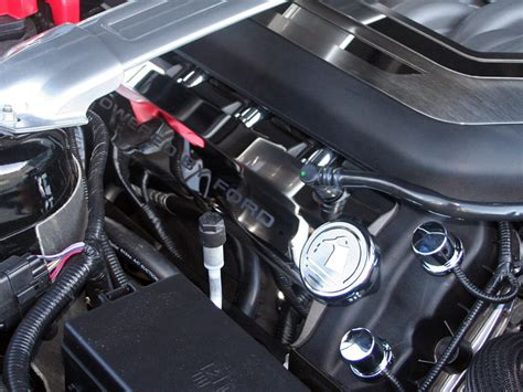 mustang gt  powered  ford etched fuel
