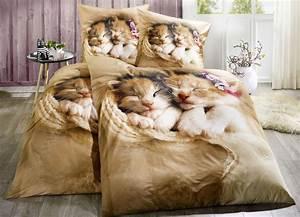 123 Tv Bettwäsche : dobnig bettw sche mit katzenkindern bettw sche brigitte hachenburg ~ Frokenaadalensverden.com Haus und Dekorationen