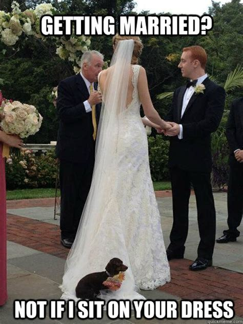 Getting Married Memes - getting married not if i sit on your dress overly attached dog quickmeme