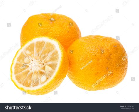 Yuzu Fruits Hybrid Between Citrus Ichangensis And Citrus
