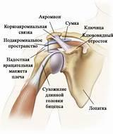 Болит плечевой сустав после бокса