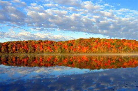 Minnesota Area Forests & Refuges: Detroit Lakes MN