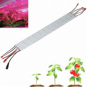 Led Grow Set : potenco 5pcs set smd5050 led grow strip lamp for flowers 36w red blue led grow light full ~ Buech-reservation.com Haus und Dekorationen
