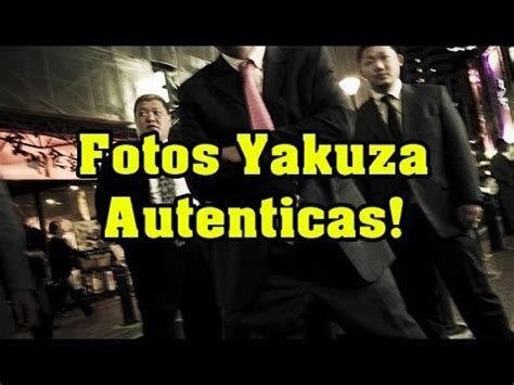 fotos yakuza autenticas la mafia mas poderosa youtube