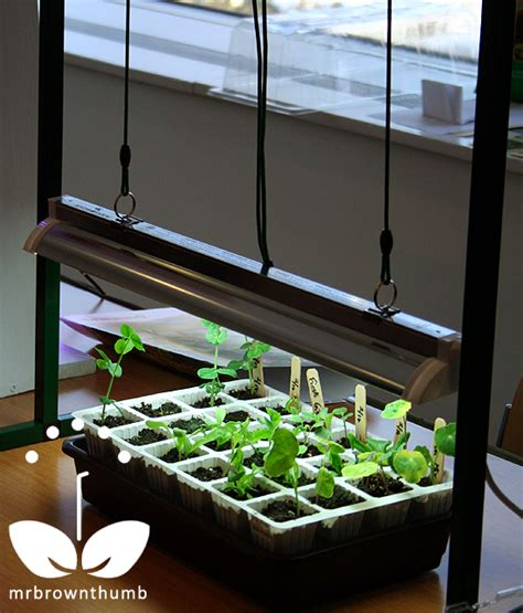 seed starter grow lights grow lights for indoor seed starting mrbrownthumb