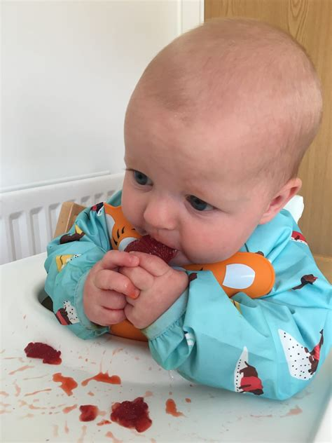 Baby Led Weaning Mummy Miller