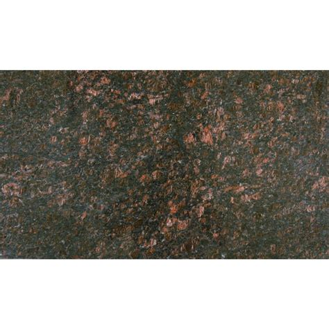 brown granite tiles ms international tan brown 18 in x 31 in polished granite floor and wall tile 7 75 sq ft