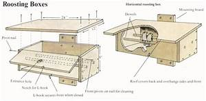 Bird Roosting Box Plans, 16 X 24 Shed Design