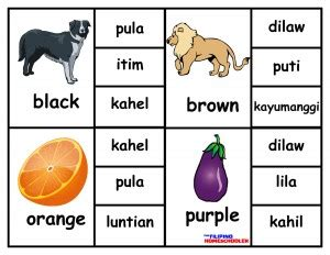 Learning Filipino Colors In Filipino Clip Cards The