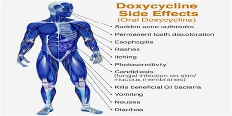 doxycycline   effects assignment point