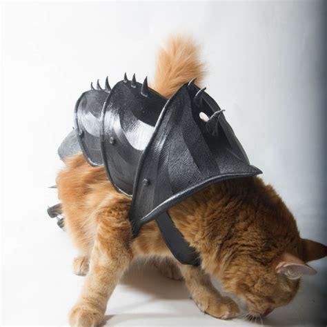 file cat armor cults
