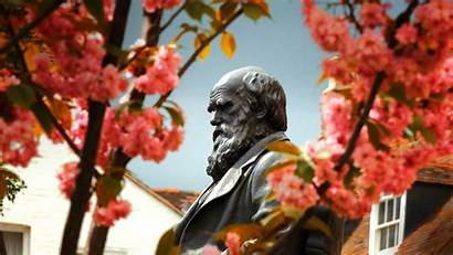 Shrewsbury Darwin Bing Charles Spring Statue Shropshire