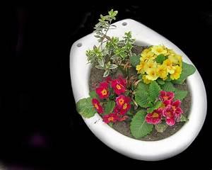 Was Sind Frühlingsblumen : ergebnis f r fr hling hintergrundbild mit fr hlingsblumen eingepflanzt in ein altes wc 1280 ~ Whattoseeinmadrid.com Haus und Dekorationen