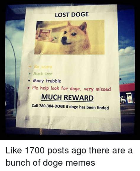 Lost Doge Meme - lost doge poster www pixshark com images galleries with a bite