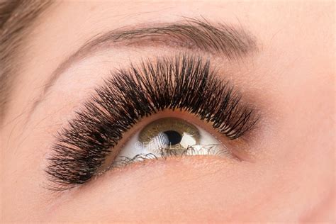 pre fanned volume lashes 2d 3d 4d 5d volume eyelash extensions before and after