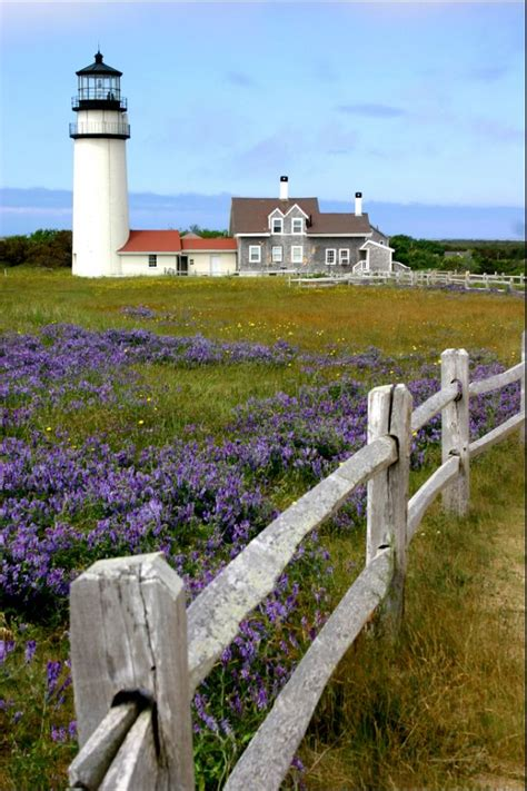535 Best Images About Cape Cod Favorites On Pinterest