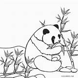 Panda Coloring Pages Printable sketch template