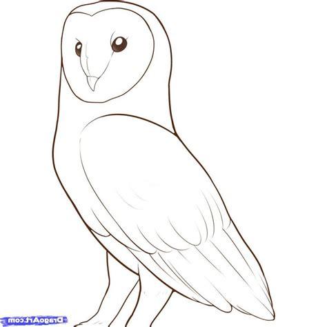 simple owl drawings 25 best owl drawings ideas on owl sketch