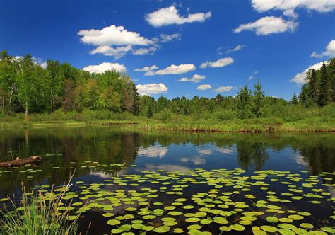 2 pond hd wallpapers backgrounds wallpaper abyss