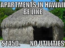 Hilarious Hawai'i Memes That are Too Real for Locals