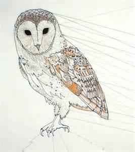 Barn Owl Drawing