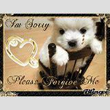 Im Sorry Friendship Quotes   400 x 300 animatedgif 107kB