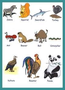 Vocabulary for Kids Animals